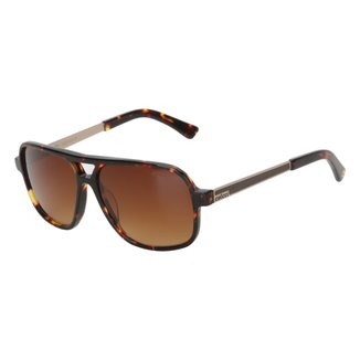 Óculos de Sol Colcci Tartaruga Feminino